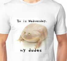 it' is wednesday my dudes Unisex T-Shirt