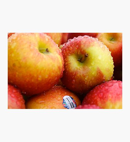 Crisp Apples Photographic Print