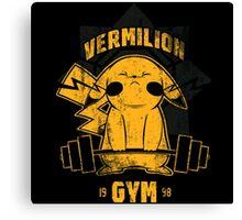 Vermilion Gym Canvas Print