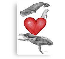 Loving marine mammals - version red Canvas Print