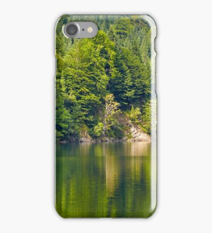 Lake and pine trees iPhone Case/Skin