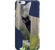 Shaped-Black Kitten Explorer iPhone Case/Skin