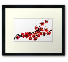 Pink flowers of cherry Framed Print