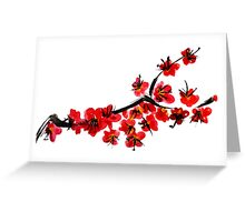 Pink flowers of cherry Greeting Card