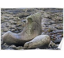 Giants Shoe at the Giants Causeway Poster