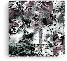 BW 023 Canvas Print