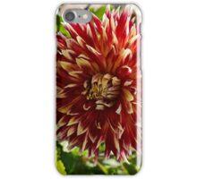 Blooming Dahlia Bud iPhone Case/Skin