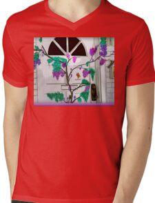Doorway Of Life Mens V-Neck T-Shirt