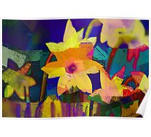 Chalk Blocked Daffodils Poster