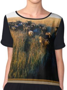 Out Of Africa #7 Chiffon Top