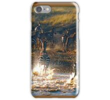Out Of Africa #6 iPhone Case/Skin