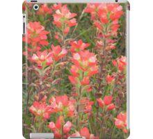 Tall Indian Paintbrush  iPad Case/Skin