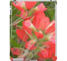 On the Road with Indian Paintbrush iPad Case/Skin