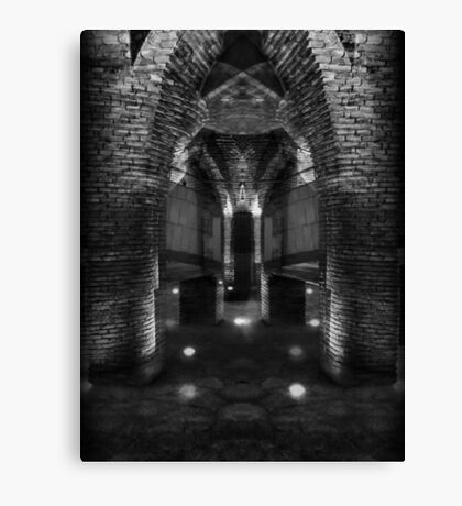 Reality itself is a shadow Canvas Print