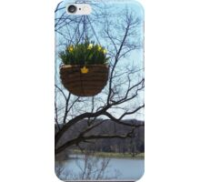 Spring Hangs in the Balance iPhone Case/Skin