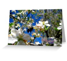 blue skies and a bee Greeting Card