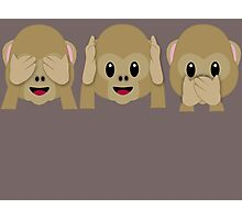 Three Wise Monkeys Photographic Print