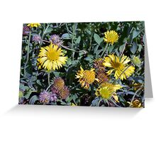 Yellow flowers in the garden. Greeting Card