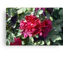 Beautiful red purple flowers and green leaves. Canvas Print