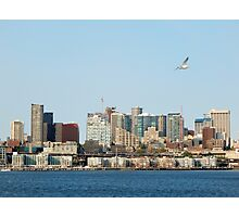 Seattle Seagull Photographic Print