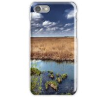 Marshes and reed iPhone Case/Skin