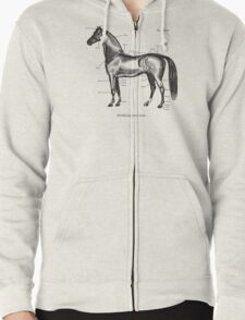 Identifying your horse Zipped Hoodie