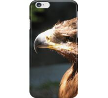 eagle in the city zoo iPhone Case/Skin