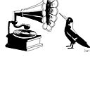 Magpie Music by Joel Tarling