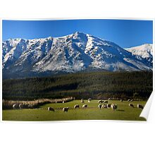 Snow capped - New Zealand Poster