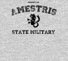 Property of Amestris State Military (Fullmetal Alchemist) Unisex T-Shirt
