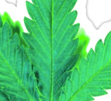 Green Leaf Sticker