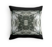 Lace Canopy Throw Pillow