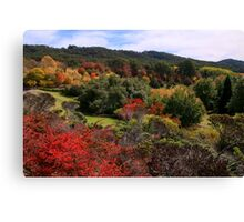 Best time of the year Canvas Print