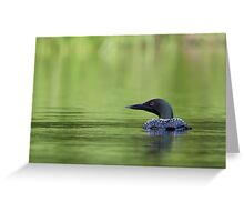 Cool and green and shady - Common loon Greeting Card