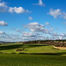 Views of Wiltshire. by Dave Hare