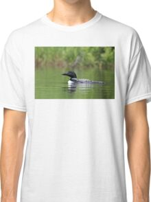 Common loon  Classic T-Shirt