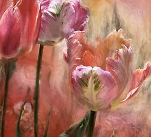 Tulips - Colors Of Love by Carol  Cavalaris