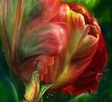 Tulips - Colors Of Paradise by Carol  Cavalaris