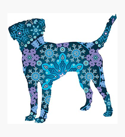 Labrador Retriever, Bohemian Snowflakes Photographic Print
