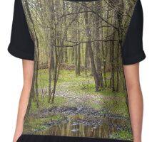 Beautiful hornbeam forest Chiffon Top