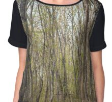Hiking trail in the forest Chiffon Top