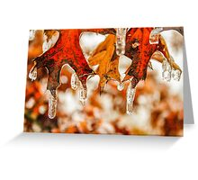 Frozen Leaves on a Tree Greeting Card