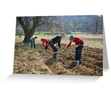 Sowing potatoes Greeting Card
