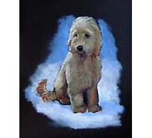 Golden Doodle Dog, Oil Pastel Painting, Dog Art Photographic Print