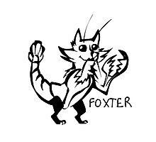 Foxter Photographic Print