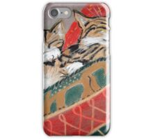 Kittens Sleeping iPhone Case/Skin