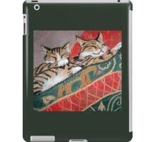 Kittens Sleeping iPad Case/Skin