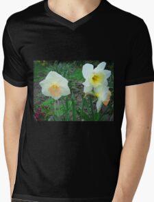 Daffodils Mens V-Neck T-Shirt