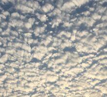 Amazing Morning Sky Sticker