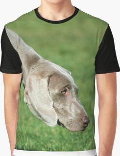 Weimaraner dog Graphic T-Shirt